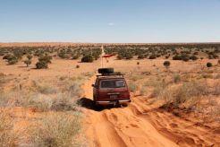 Desert28
