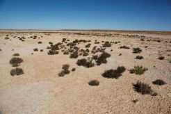 Desert39