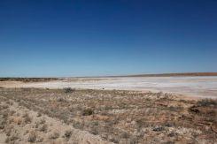 Desert40