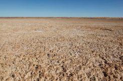 Desert41