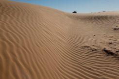 Desert47
