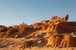 Desert53