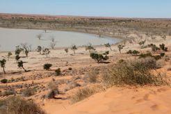 Desert6