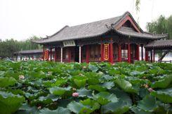 Jinan15