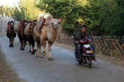 DunHuang5