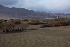 Karakoram15
