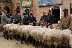 Kashgar3