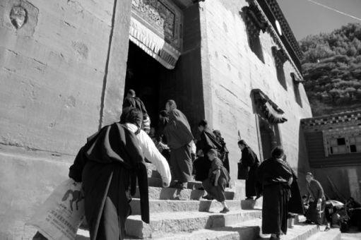 Tibet24