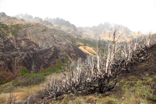 Ushuaia56