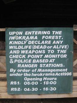 Iwokrama06