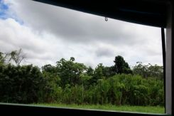 Amazon P252