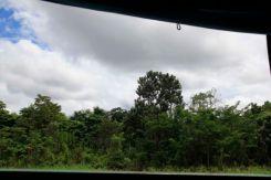 Amazon P253