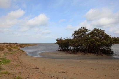 Guajira40
