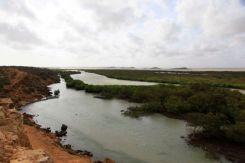 Guajira44