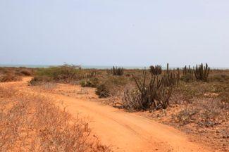 Guajira50