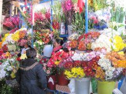 Machu Picchu05