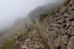 Machu Picchu23