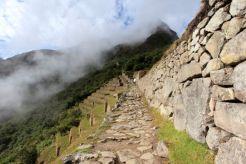 Machu Picchu25