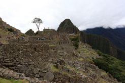 Machu Picchu39