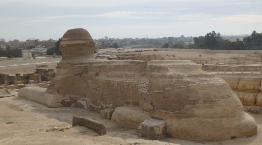 The back of the sphinx